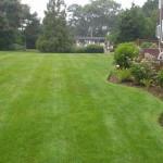 Как правильно организовать газон?